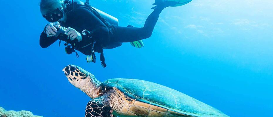 美人魚島旅遊,美人魚島浮潛,美人魚島浮潛教練,Mantanani,美人魚島潛水,美人魚島美景,美人魚島景點觀光,沙巴浮潛,沙巴潛水,沙巴深潛,亞庇浮潛,亞庇一日遊