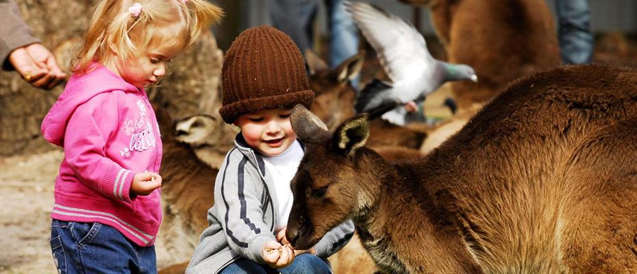泰國曼谷野生動物世界門票