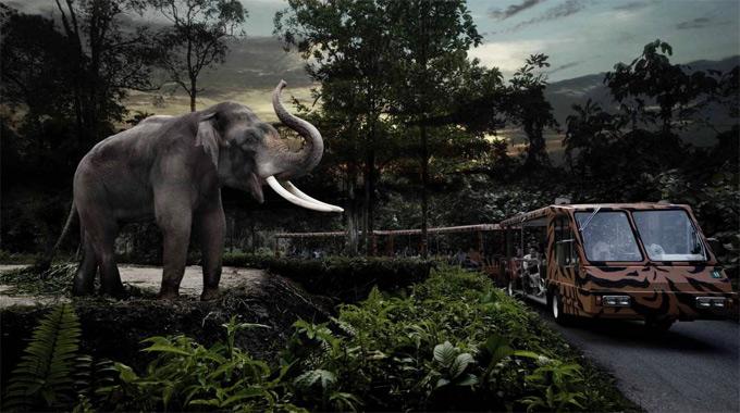 新加坡夜間野生動物園+園區遊覽車門票(不分場次)