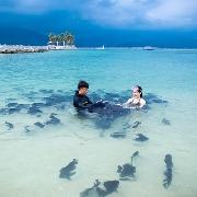 三亞分界洲島浮潛一日遊